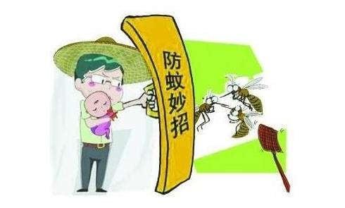 蚊子3.jpg