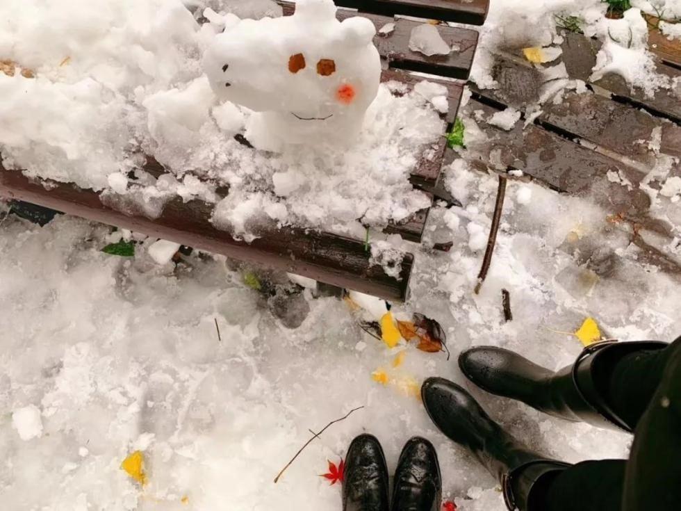 消费保_消费新闻_ 2018年度堆雪人大赛作品出炉!