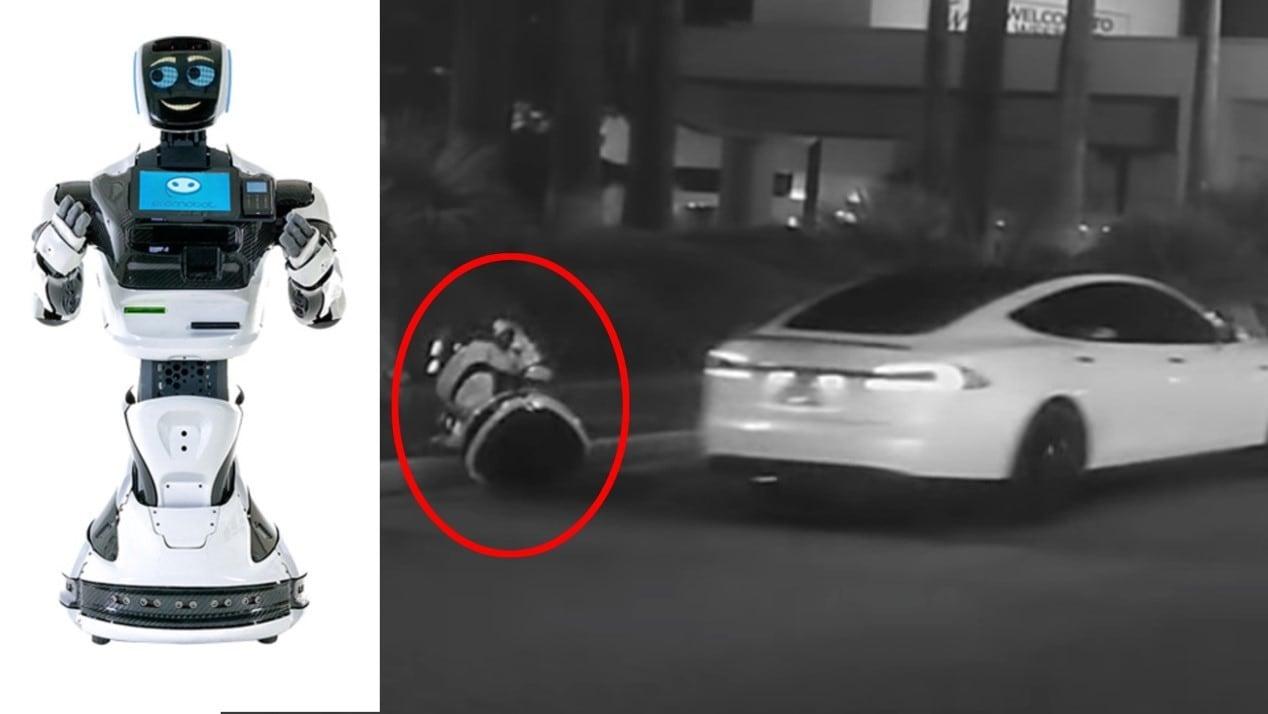 """消费保_消费新闻_CES2019趣闻丨skr机器人被特斯拉撞""""死""""!自动驾驶又要背锅"""